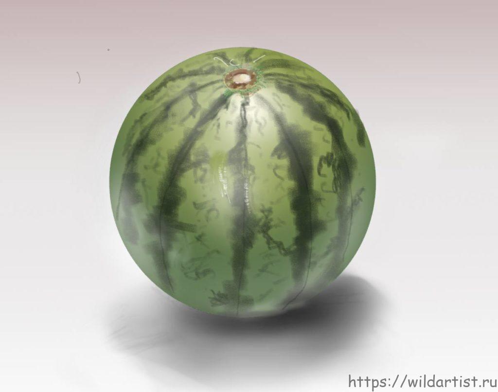 арбуз, рисунок