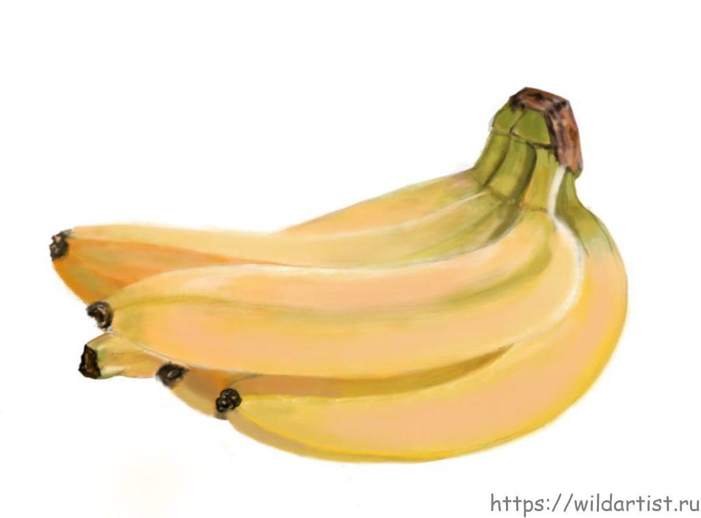 бананы, рисунок
